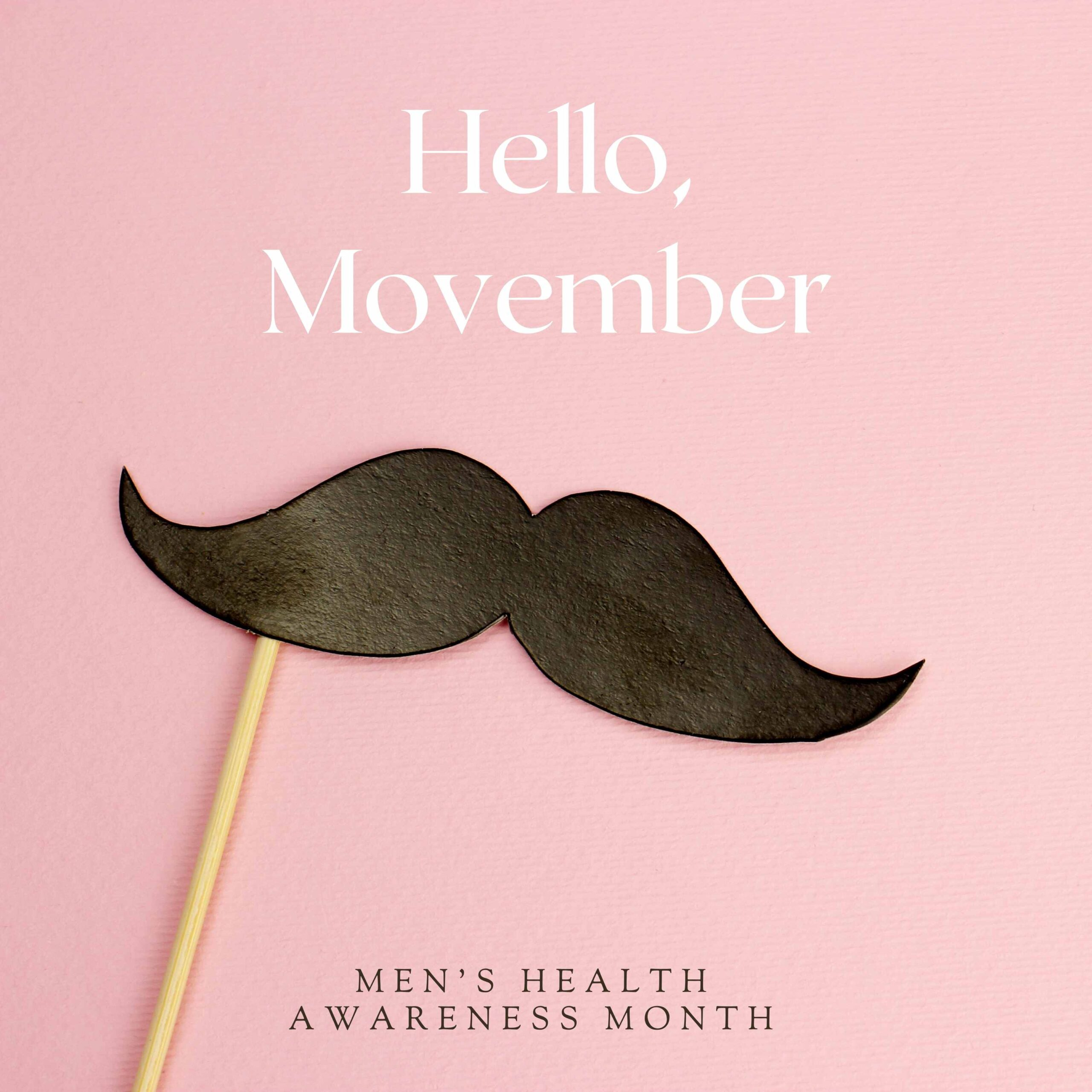 Movember, mens health awareness month, mousetache, the healthy life foundation