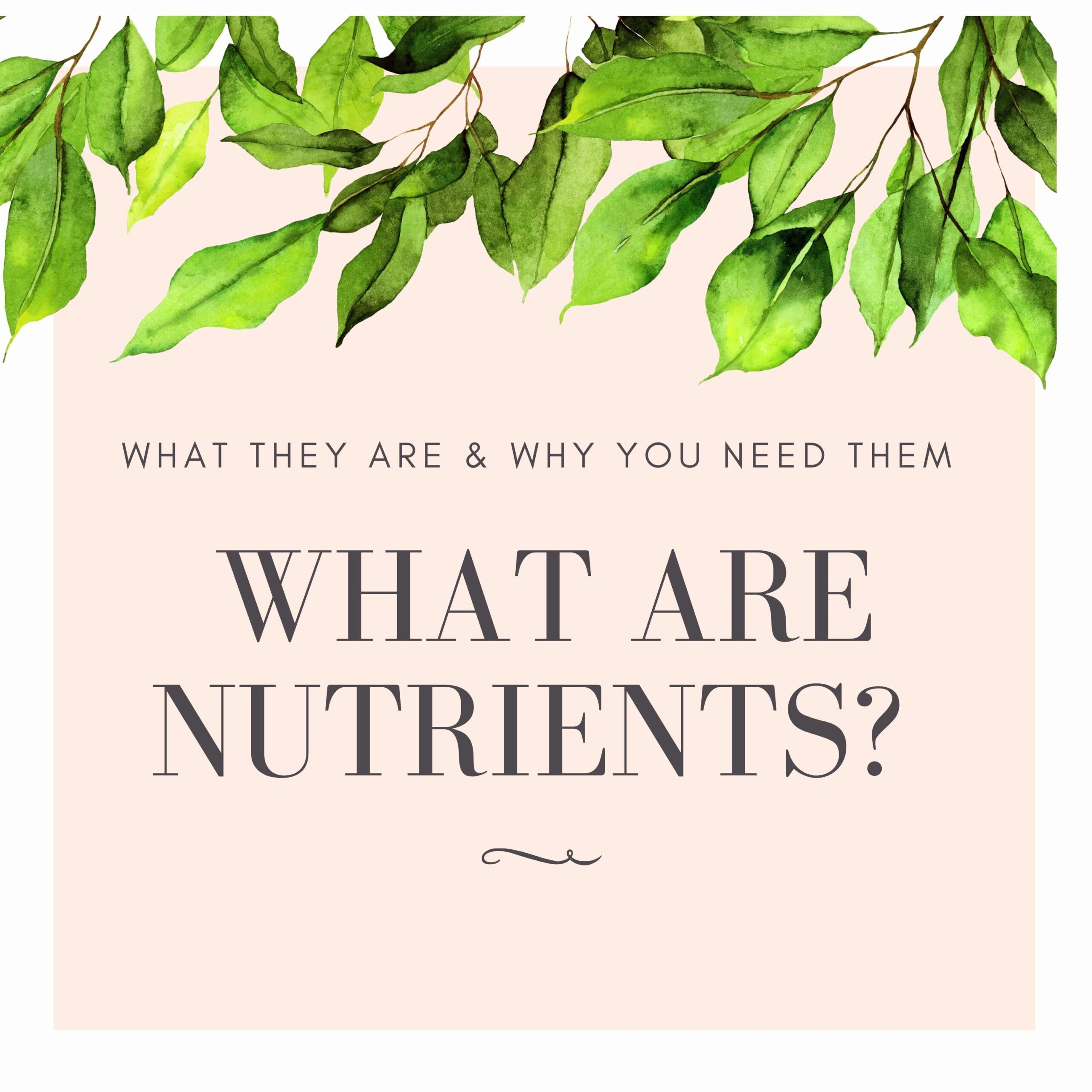 nutrients, national nutrition month, nutrition. the healthy life foundation