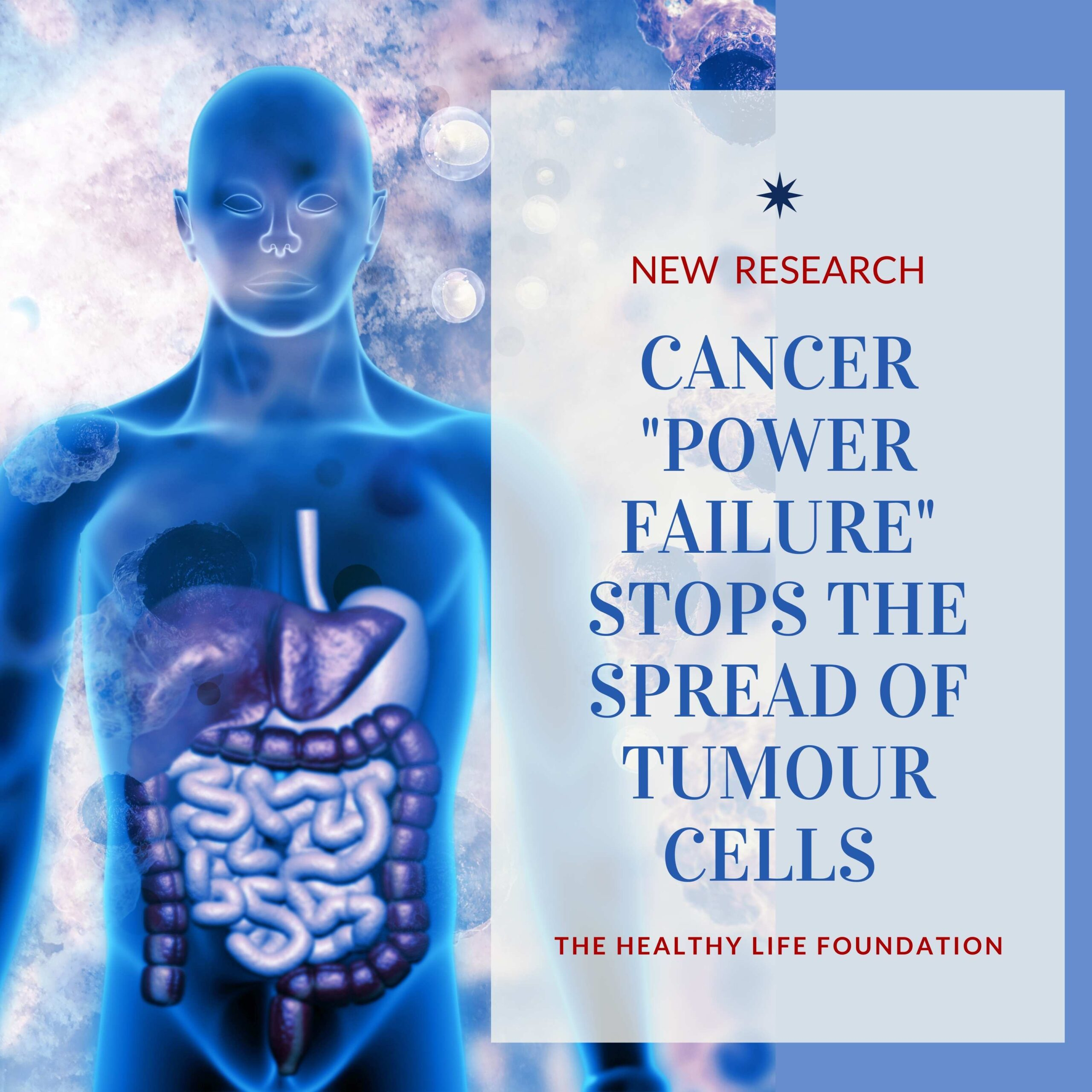 The healthy life foundation, Cancer Research, Stop the spread of cancer, Michael P. Lisanti